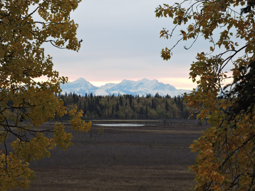 View from the Seeholzer cabin - photo by Cindy Calzada