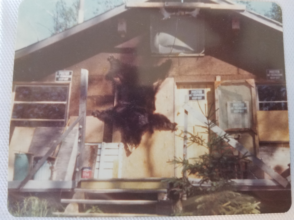 The Seeholzer cabin in the 60's - Lydic Collection
